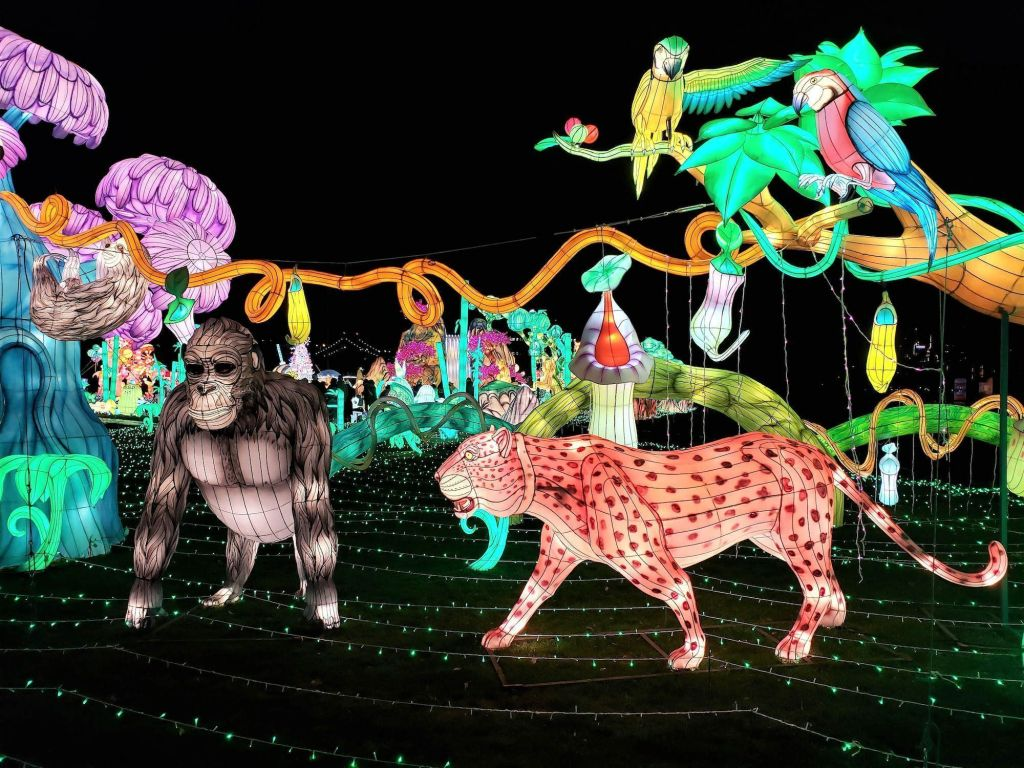 Animales Luminocity