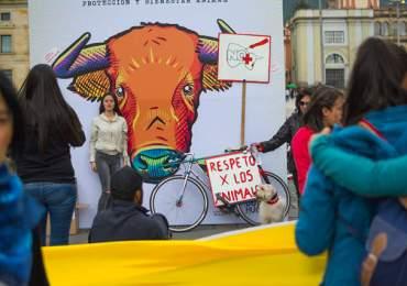 Animalistas seguirán movilizándose para exigir no más olé