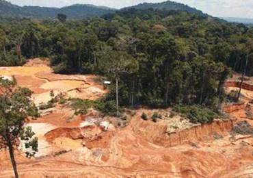 Deforestación siguen aumentando en la Amazonía colombiana