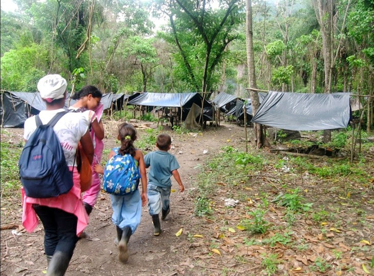 Por enfrentamientos armados en el Bajo Cauca han sido desplazadas más de 1.500 personas