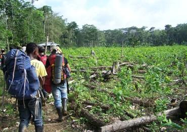 María Fernanda Cabal busca proteger a despojadores de tierras