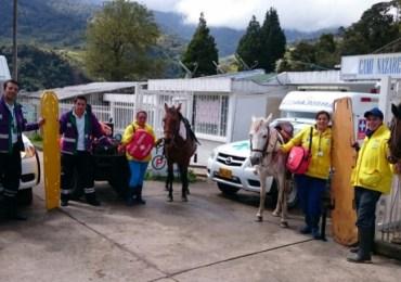 Caballos usados como ambulancias: vuelve la tracción animal a Bogotá