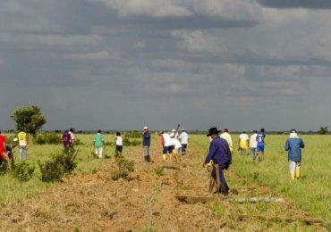 Gobierno incumple fallo de la Corte que devuelve tierras a comunidades de El Porvenir