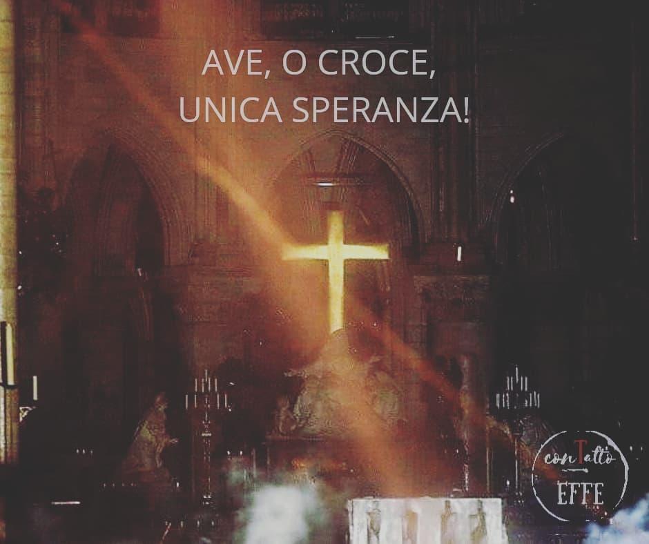 È piantata la Croce nelle viscere della Terra