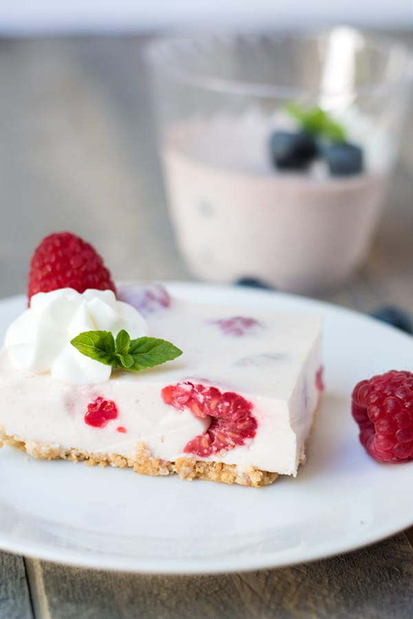Yogurt No Bake Cheesecake (Rare Cheesecake)