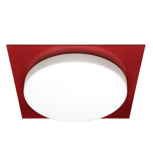 Domino Red Oyster Light