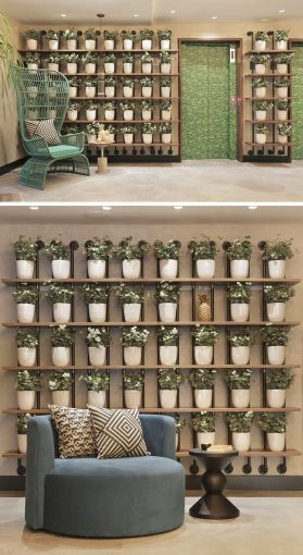 Wall Decor Idea   Create A Grid Of Identical Planters For A     WALL DECOR IDEA   Create A Grid Of Planters On A Shelving Unit For A  Contemporary