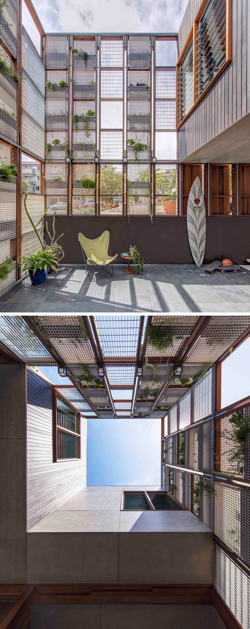 This modern Australian house has an inner courtyard with a grid of plants on a wall that will grow overtime to create a green wall.