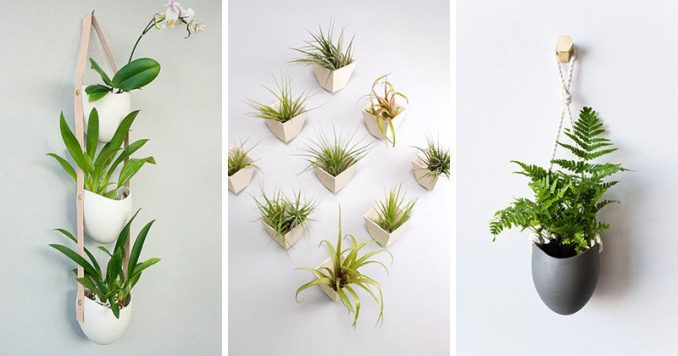Farrah Sit of design studio Light + Ladder, has created a collection of ceramic wall planters that are combined with other materials like rope or leather to create contemporary art-like installations that show off your small plants.
