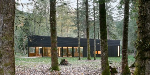 Robert Hutchison Architecture have designed a modern house that's surrounded by forest and clad in custom-run Western red cedar.
