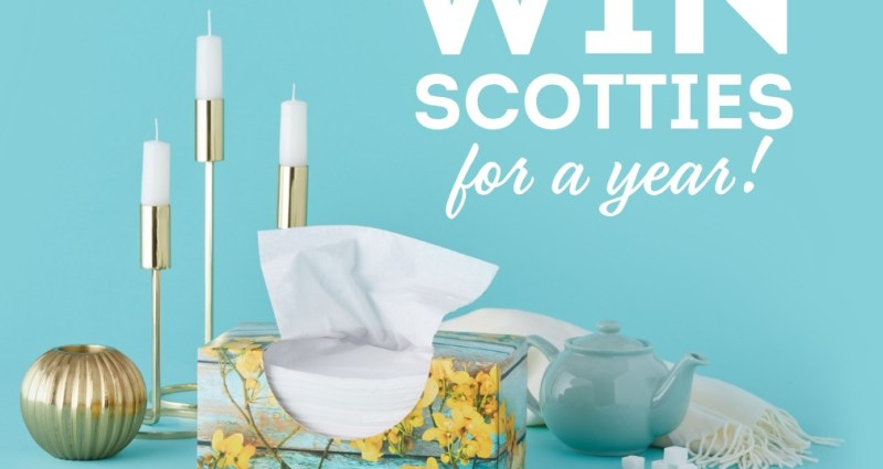 Scotties Win For A Year Sweepstakes - Stand To Win Boxes of Scotties 64- Count 2-Ply Facial Tissues
