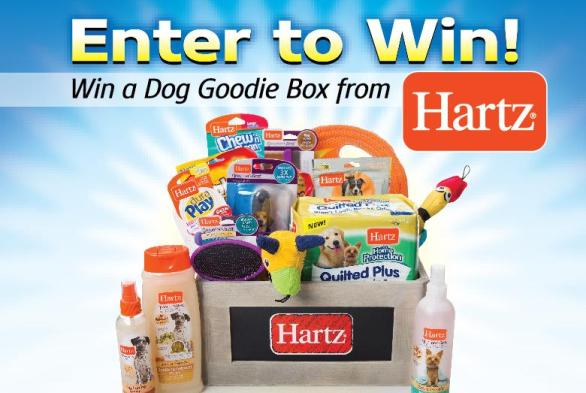 Women's Choice Award Sweepstakes – Chance To Win A Dog Goodie Box