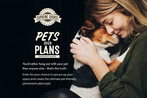HGTV Pets Over Plans Sweepstakes - Enter To Win $10,000 And Pet Food