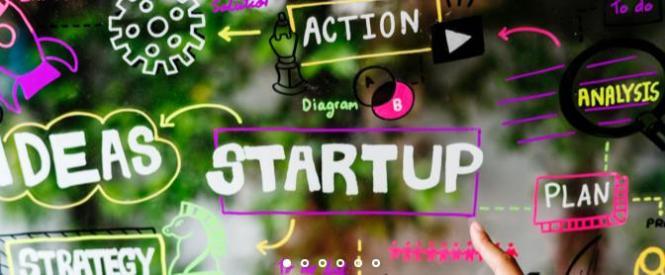 Million Dollar Pineapple $65,000 Startup Giveaway