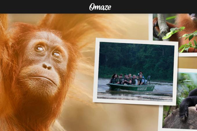 National Geographic Borneo Sweepstakes – Win Go Wild In The Rainforests