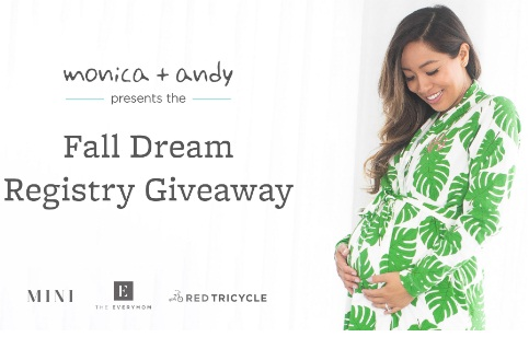 Monica And Andy Fall Dream Registry Giveaway