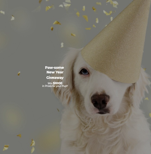 ZenPup Inc, Paw-Some New Year Giveaway