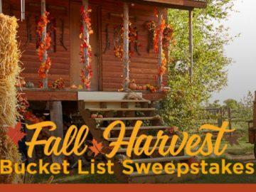 Hallmark Channels Fall Harvest Bucket List Pinterest Sweepstakes
