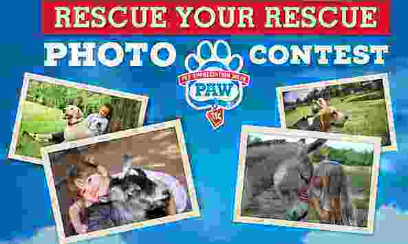 Tractor Supply Rescue Your Rescue Photo Contest
