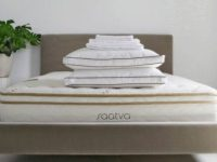 Saatva Bed of Your Dreams Sweepstakes
