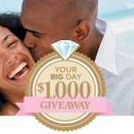 Your Big Day $1000 Giveaway (marryme.orientaltrading.com)