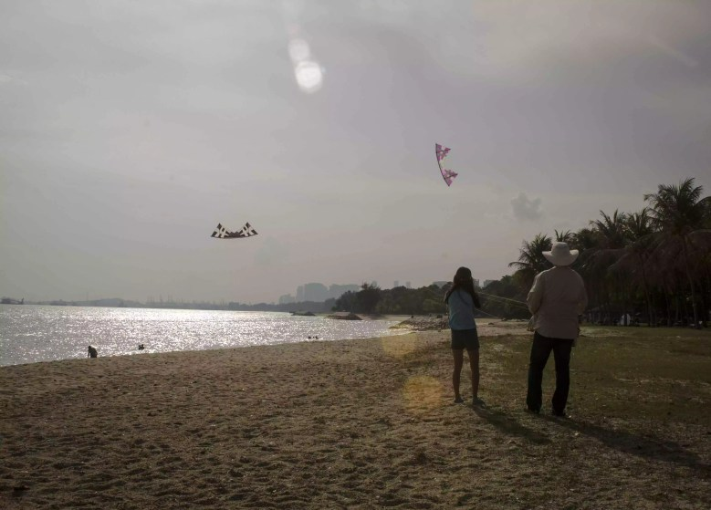 Visit Singapore City: Kites at the Beach