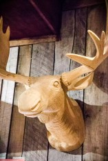 L'Orignal's moose