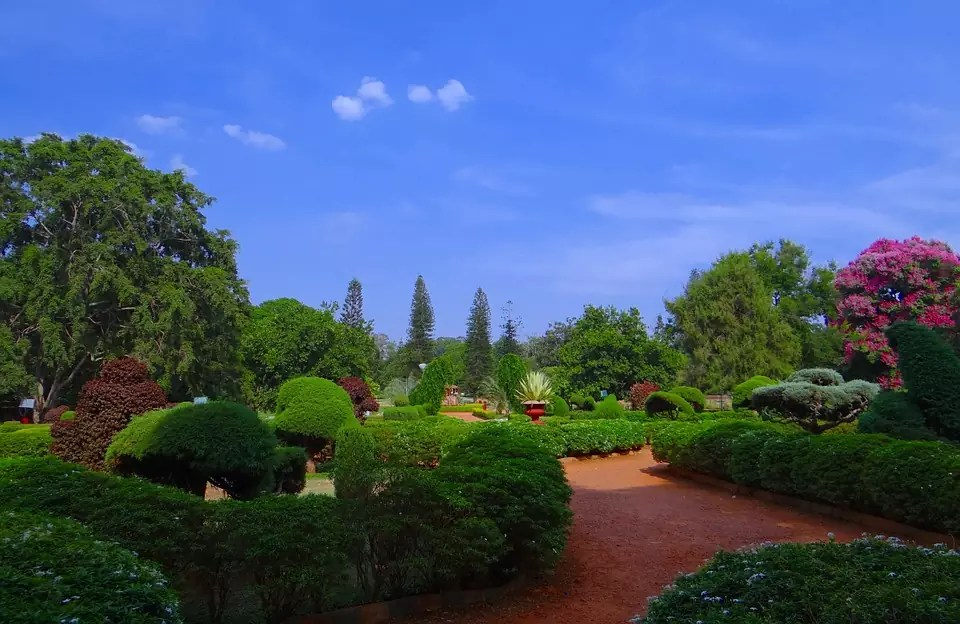 """The Lal Bagh Botanical Garden is one of several locations in Bangalore that give the city its nickname of the """"Garden City of India."""" (This is a copyright free photo) - Bangalore Travel Blog"""