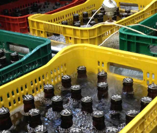 cerveja Bier Hoff
