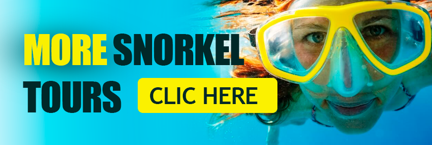 snorkel tours contoy excursions cancun mexico