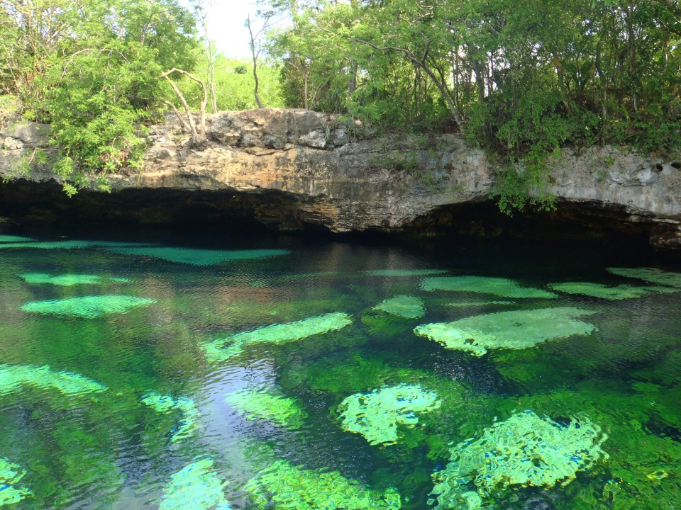 Cenote Azul by Lara Danielle (CC)