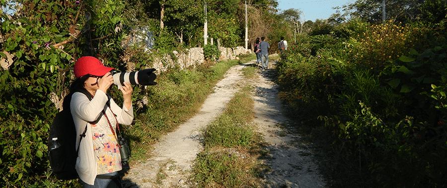 birdwatching in the mayan jungle contoyexcursions cancun riviera maya