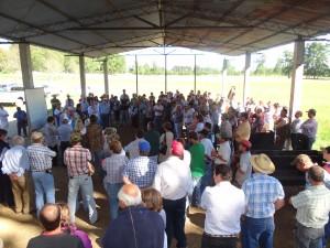 reunión agricultores en lumaco