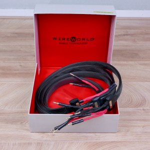 Wireworld Eclipse 6 audio speaker cables 2,0 metre 1
