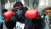 Things get hairy as the Great Gorilla Run returns to London