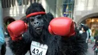 The Great Gorilla Run, London