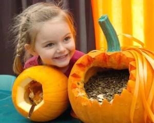 Willows Farm Village Pumpkin Festival