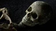 Skeletons: London's buried bones at The Willis Museum