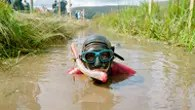 Bog Snorkelling (Photo: ©VisitBritain/Andy Sewell)