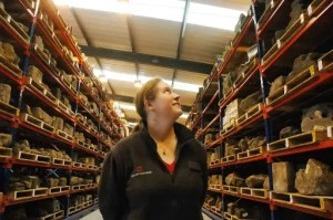 Helmsley Archaeology Store Tour - English Heritage