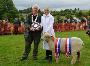 Findon Sheep Fair 2014