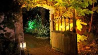 Take a wander around The Enchanted Floodlit Garden in Dorset