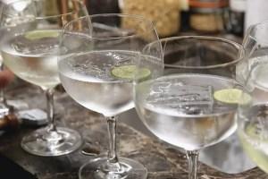 Mr Foggs Tavern - Gin Safari - World Gin Day