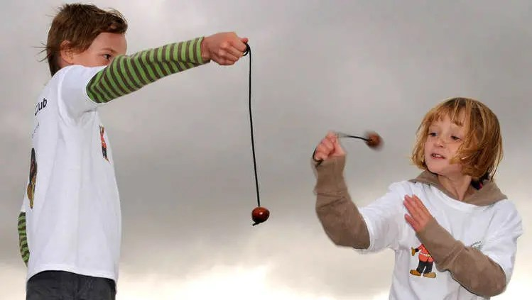 Image result for Hampstead Heath Conker Championships