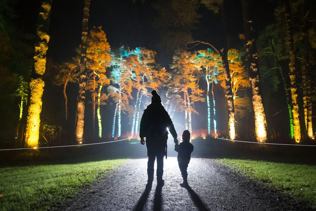 Enchanted Christmas at Westonbirt (Photo: © paulbox)