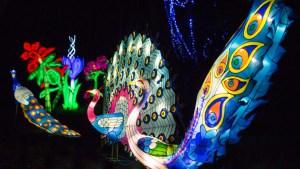 Magical Lantern Festival 2017 - London