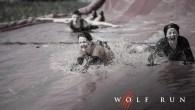 Wolf Run 2017 - Warwickshire