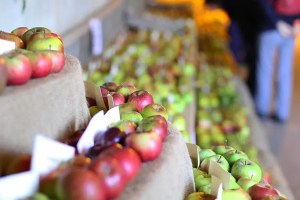 National Apple Festival 2017 - Brogdale Collections