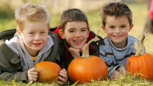 Willows Farm Pumpkin Festival 2017