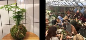 kokedama workshop - London Capital Garden Centre 2018